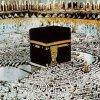 Profil de minal976