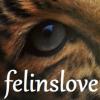 felinslove