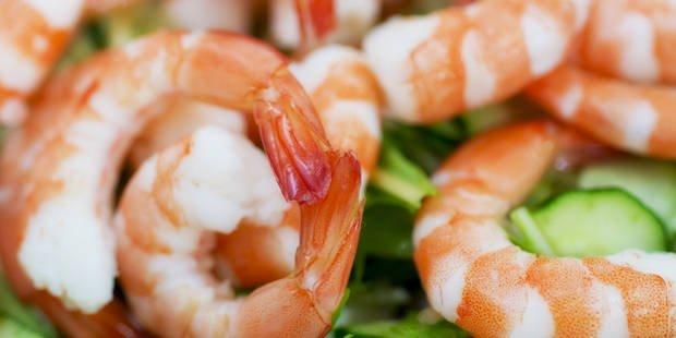 Les scampis de Thaïlande vendus dans les supermarchés belges sont nourris avec de la chair de cadavres d'esclaves