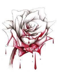 Une rose rouge comme le sang.