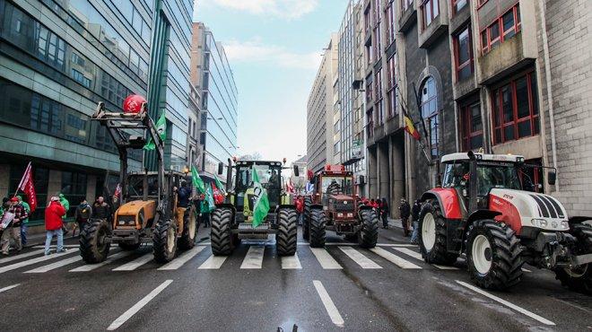 18-12-2013 - Bruxelles -  Lidl et de boucheries Renmans, qui travaillent avec les supermarch�s Aldi. Ils reprochent � ces enseignes de la grande distribution de mener une guerre des prix � leurs d�pens.